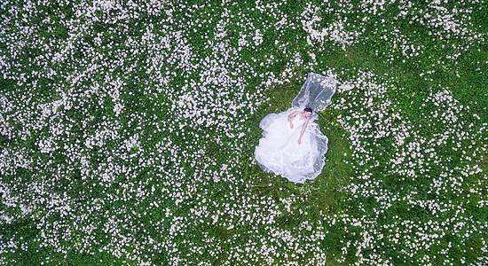 花丛中的新娘图片