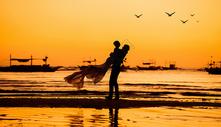夕阳下的剪影图片
