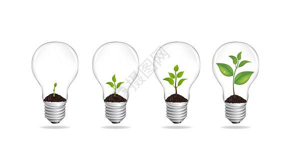 灯泡里的植物生长图片
