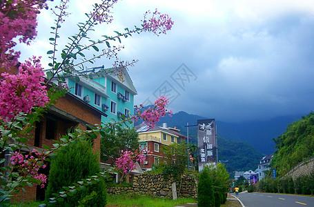 杭州天目山风景图片