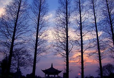 无锡太湖黄昏风景图片