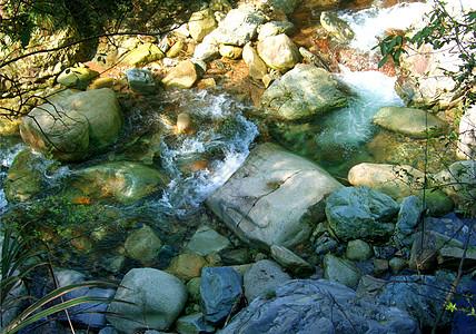 小溪和石头图片