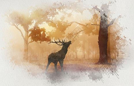 水彩喷溅效果之丛林里的鹿图片