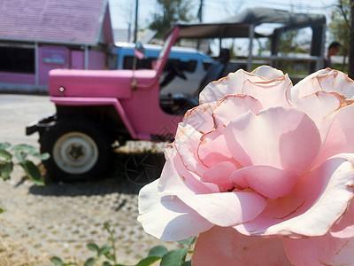 粉红色的少女心图片