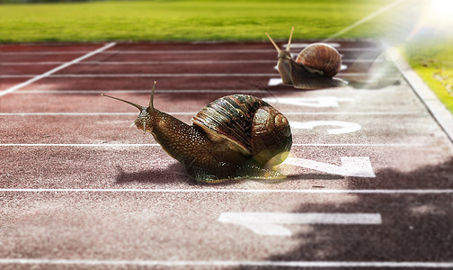 跑道上的蜗牛图片