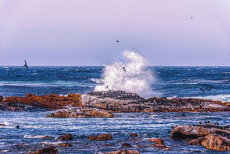 南非好望角海滩图片