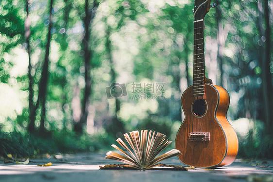 吉他绿叶与日记本图片