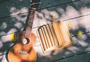 吉他叶子与日记本图片