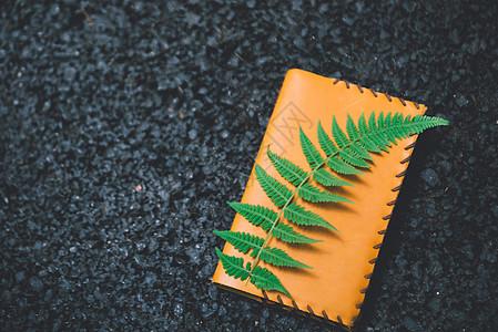 绿叶与日记本图片