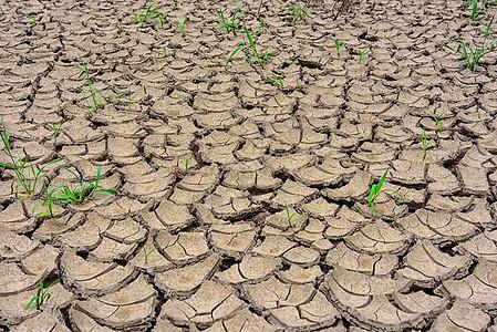 干旱贫瘠土地环保主题素材图片