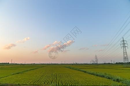 蓝天白云的田地图片