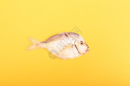 一条咸鱼图片