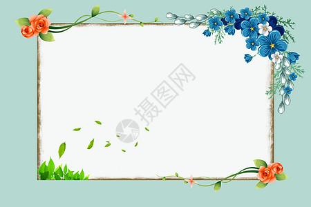 蓝花儿图片