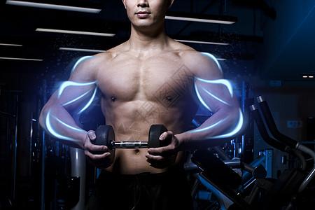 健美男性肌肉线条图片