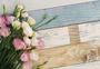 花卉与背景图片