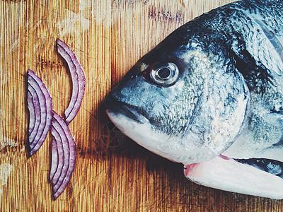 多彩厨房故事食材选择之鲷鱼图片