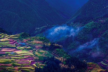 高山里的五色梯田图片