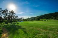 果岭高尔夫球场的蓝天白云图片