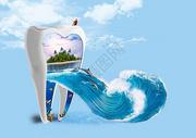 牙齿的世界图片