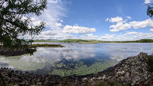 阿尔山杜鹃湖图片