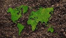 土壤中绿色的地球图片