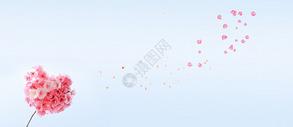 花瓣飘落背景图片