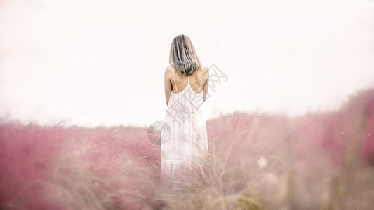 花丛中的白色连衣裙唯美女性背影图片