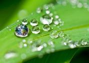 水珠地球环保图片