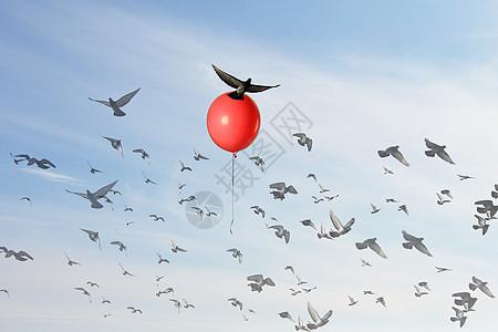 一只鸟在一个红色的气球上升起图片
