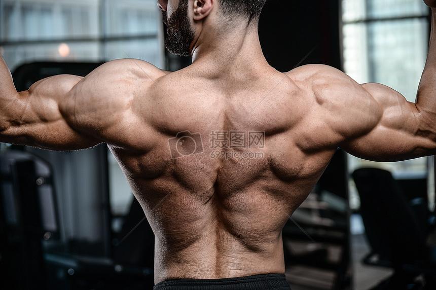 健康的肌肉男背面图片