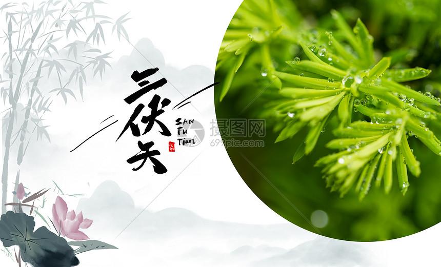 夏日三伏天图片