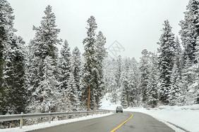 白雪皑皑的大路图片