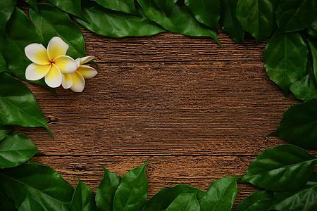 原木树叶文字背景图片