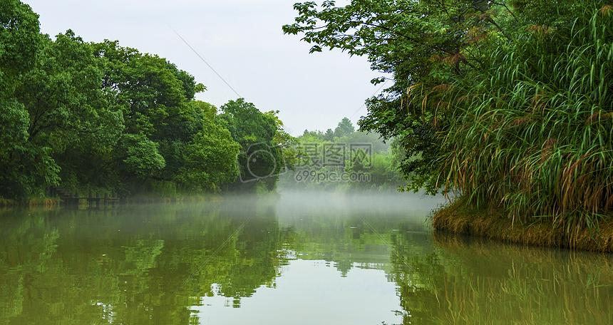 沪杭雨中盛夏图片