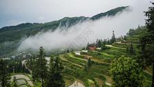 黔东南的梯田和晨雾图片