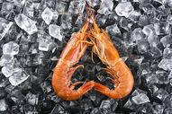 小龙虾基围虾图片