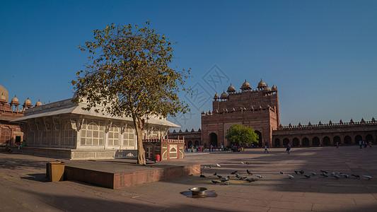 印度阿格拉堡图片