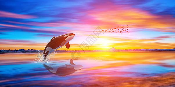 鲸鱼出水图片