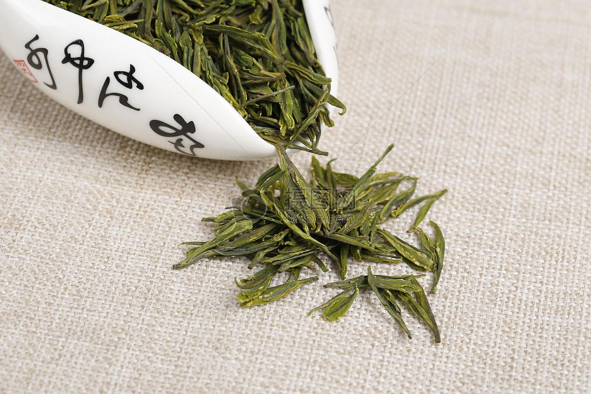 安吉白茶核心产区