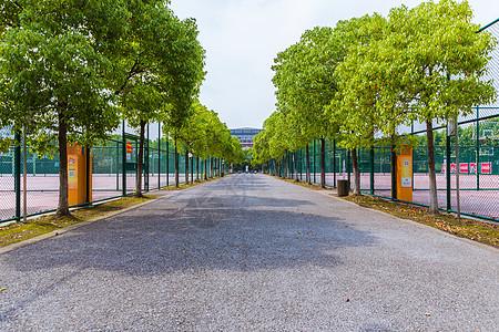 上海大学操场防护网图片