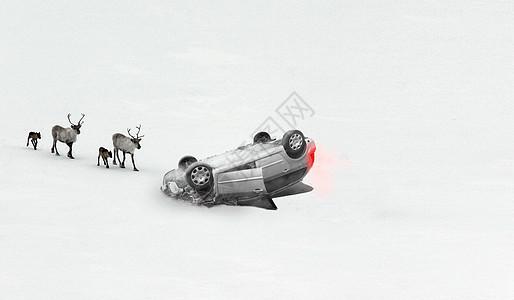 白色雪地翻车出车祸麋鹿简约壁纸图片
