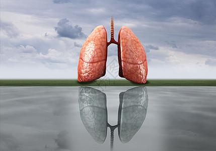 健康肺部与肺癌创意图图片