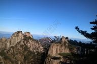 黄山云海看树图片