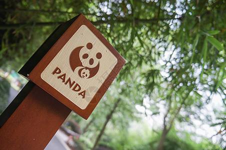 熊猫图标图片