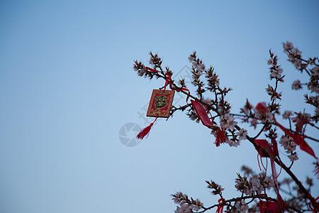 香山风景 图片