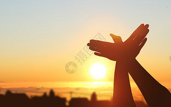 渴望和平展翅高飞图片