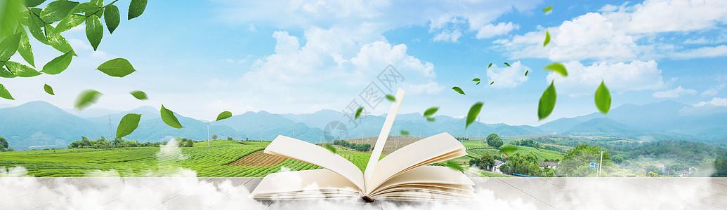 从书中飘出的绿叶图片