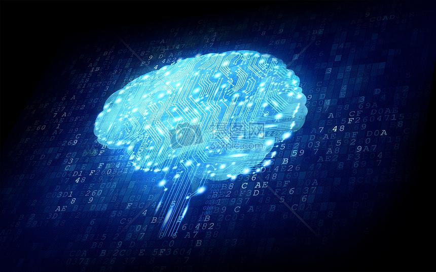 云大脑电路图