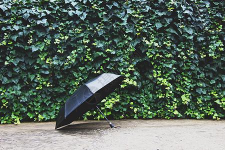 一把黑伞图片