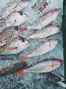 鱼市上冷冻的新鲜鱼图片